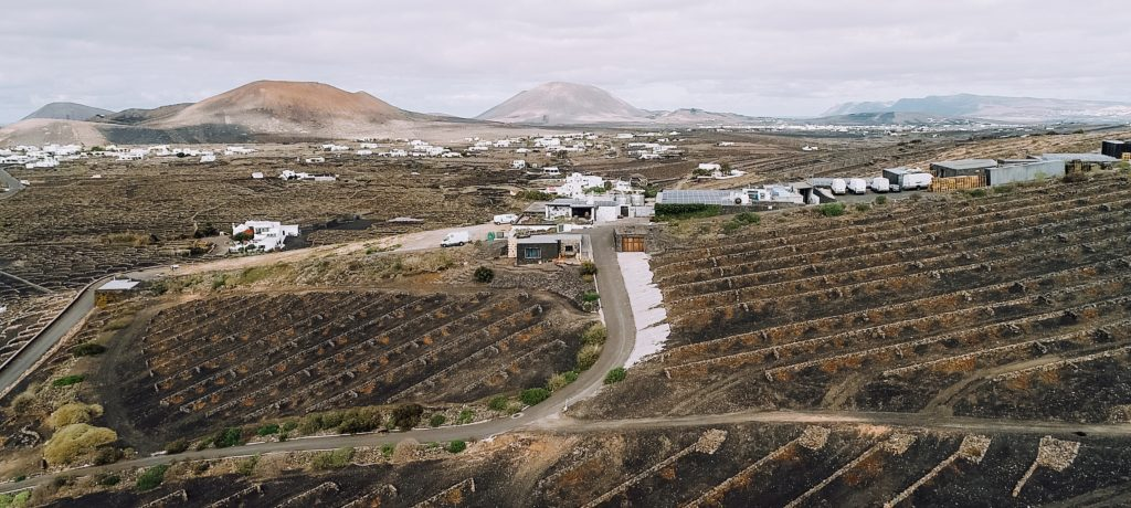 Vegadeyuco.com Winery et vignobles de La Geria
