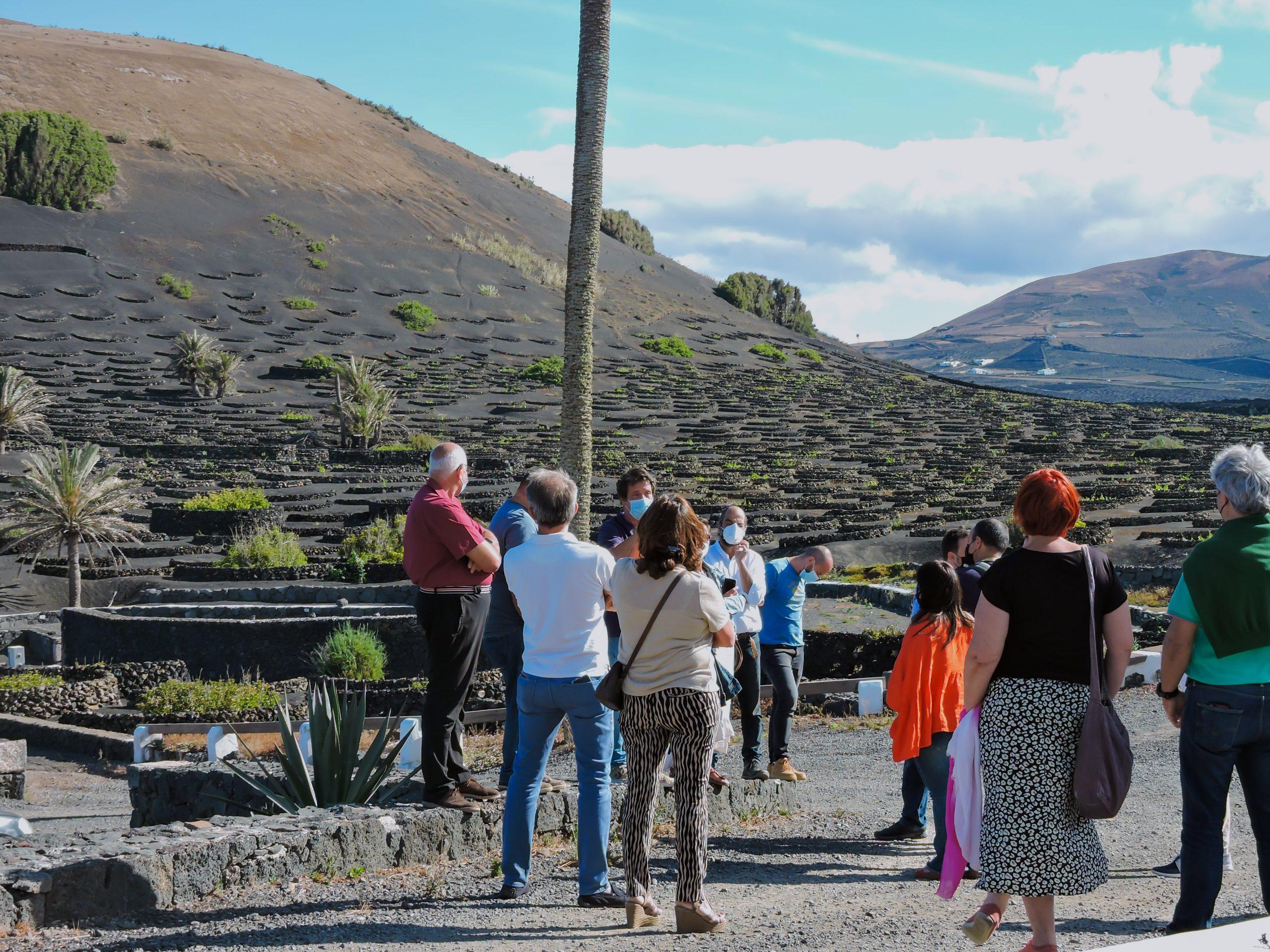 Wine tourism Lanzarote