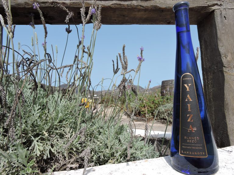 First bottled wine 2021